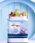Акваферма Xiaomi Mini Lazy Fish Tank HF-JHYG005